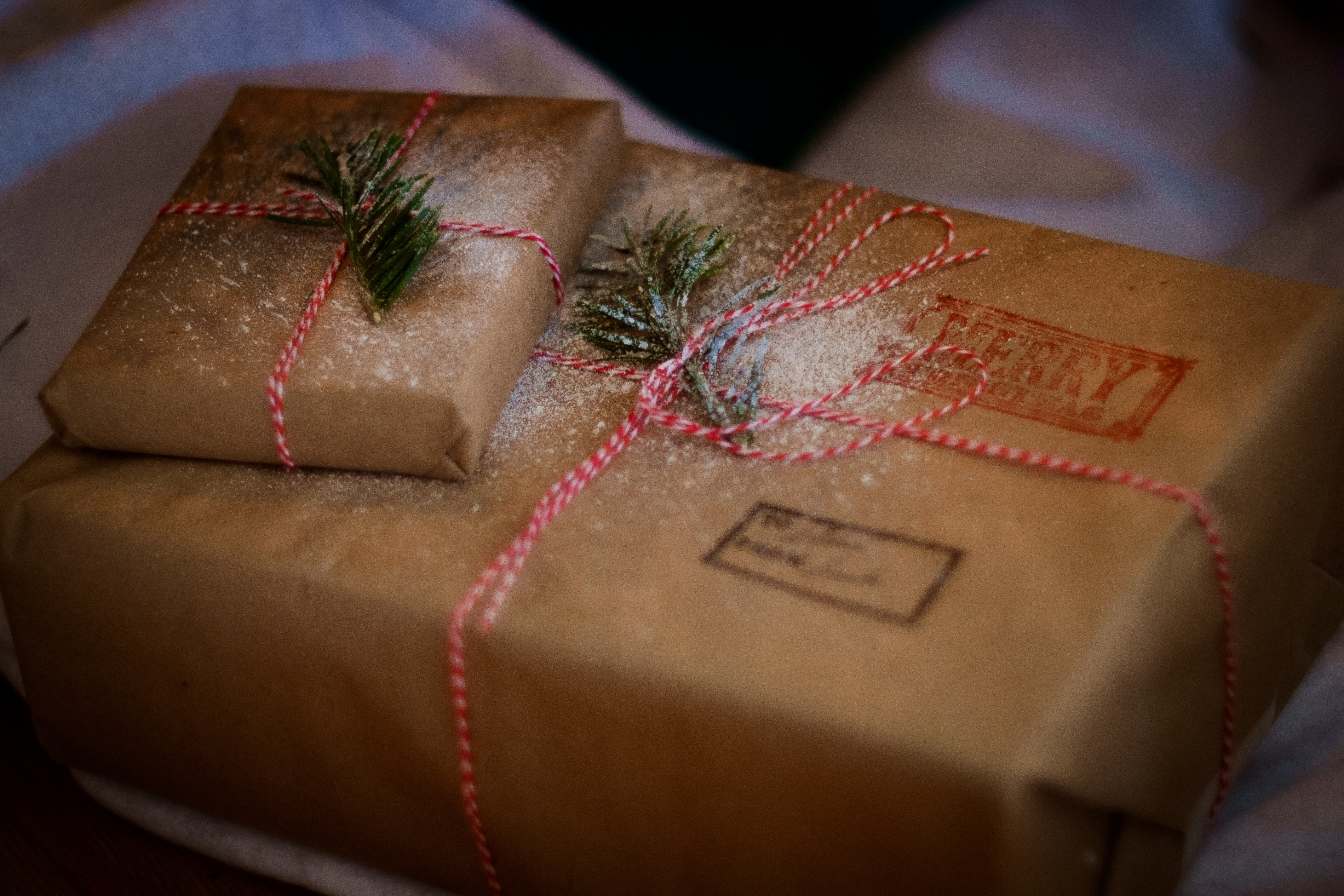 Handling the Holiday Hurry: Ecommerce Fraud Prevention